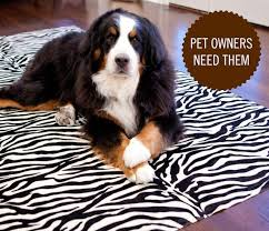 Pet Friendly Area Rugs Best 25 Washable Area Rugs Ideas On Pinterest Round Kitchen