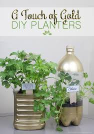 diy planters a touch of gold diy planters from soda bottles plant markers
