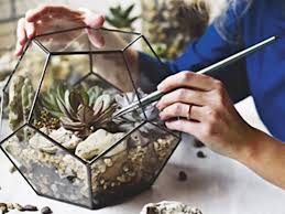 large geometric glass terrarium container gardening gift