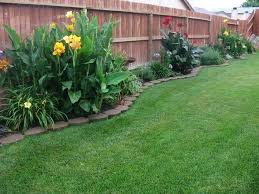 Backyard Landscaping Ideas For Privacy Tropical Backyard Garden Ideas Best 20 Privacy Plants Ideas On