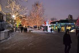 Lights At Lincoln Park Zoo by Christmas In Chicago Couples Edition One Yellow Bag