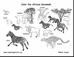 remarkable africa map coloring page with africa coloring pages