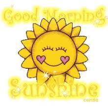 Good Morning Sunshine Meme - good morning sunshine gifs tenor