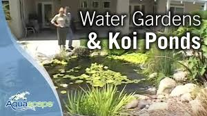 Aquascape Water Features Aquascape Water Gardens Water Features U0026 Koi Ponds Youtube