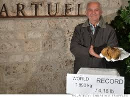 s largest white truffle could pull in 1 million