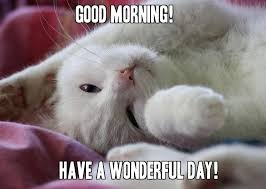 Cute Meme - cute cat good morning memes for her good morning images
