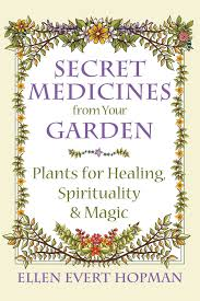 native american plants used for medicine secret medicines from your garden plants for healing