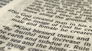 what the bible says about transgender ideology family policy