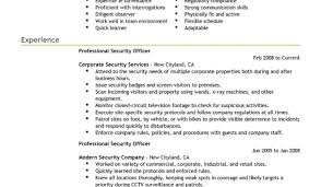 Examples Of Resumes Best Security by Resume Federal Resume Writing Service 17 Government Jobs Example