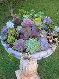 1219 best designs for gardens images on pinterest backyard ideas