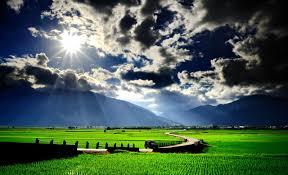 dark village wallpaper sky green grass splendor trees sunlight village road landscape