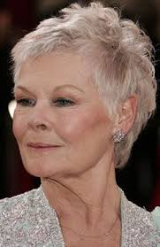 how to get judi dench hairstyle the 25 best judy dench hair ideas on pinterest judi dench