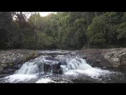 Gardeners Falls Maleny - gardners falls maleny queensland travel vlog 021 youtube