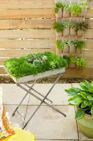 Ideas For Gardening Small Garden Ideas Designs Ffad Ghk Tray S Garden Trends