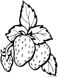 strawberry fruit s freef8ca coloring pages printable