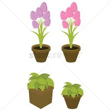 potted plants vector image 1570461 stockunlimited