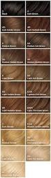 best 25 root touch up ideas on pinterest pravana silver back