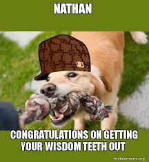 Dog Teeth Meme - nathan congratulations on getting your wisdom teeth out scumbag
