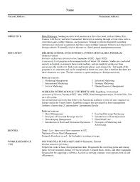 resume examples for project managers in construction the best