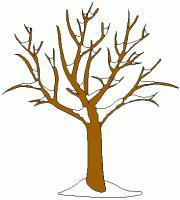 tree in winter clipart 101 clip