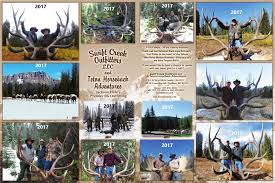 Wyoming Easy Click Travel images Wyoming elk outfitters teton horseback adventures png