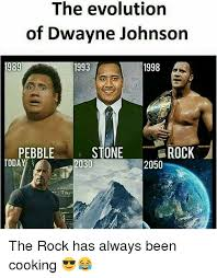 Rock Memes - the evolution today of dwayne johnson 1998 1993 pebble stone rock