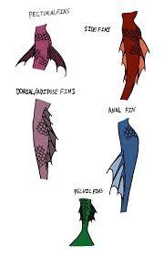 25 mermaid tail drawing ideas mermaid