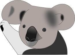 koala bear clipart transparent pencil and in color koala bear