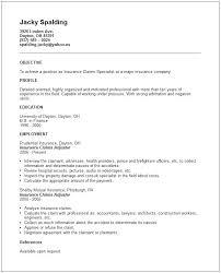 insurance sample resume sample great formats breathtaking claims