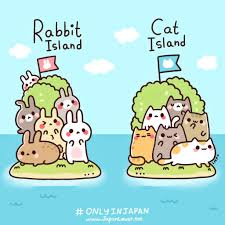 only in japan rabbit island u0026 cat island life is fun and games