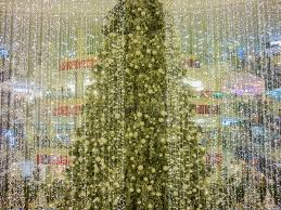 tree at shopping mall editorial stock photo image