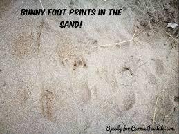 Foot Meme - carma poodale bunny meme foot prints