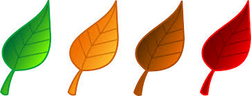 fall leaves 7 free autumn and fall clip artllections image