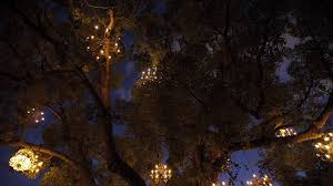 Tree Chandelier The Chandelier Tree Of Silver Lake Colossal