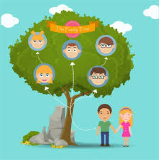 family tree infographic illustration icons free vector in
