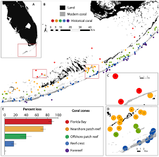 geogarage blog the coral reef loss data hidden in old