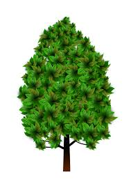 cartoon tree clipart