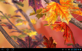 autumn tree live wallpaper android apps on google play