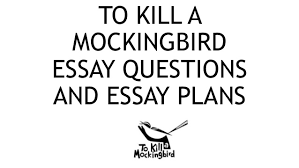To Kill A Mockingbird Cat Meme - essay of courage courage essay scholarship thesis statement for to