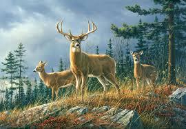 Whitetail Deer Home Decor Wallpops Ideal Decor Autumn Whitetail Wall Mural Wayfair