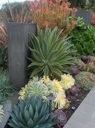 garden 26 in santa monica fique a conhecer as nossas dicas de jardinagem em www