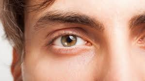What Causes A Blind Spot In Your Eye Human Eye U0027s U0027blind Spot U0027 Can Shrink With Training