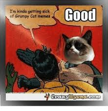 Grumpy Cat Meme Good - i m kinda getting sick of grumpy cat memes good 0 dank meme on me me