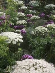 21 best the cutting garden images on pinterest