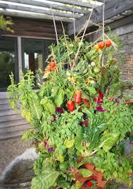 indoors garden starting seeds indoors garden tower project