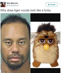 The Meme - tiger woods mugshot gets the meme treatment daily mail online