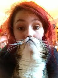 Cat Beard Meme - the 25 most epic cat beards of all time