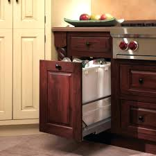 Kitchen Cabinet Trash Can Pull Out Double Pull Out Trash Can Under Sink Double Pull Out Trash Can Rev