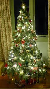 a of notes tree lights warm or cool white
