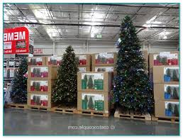 12 ft pre lit tree costco